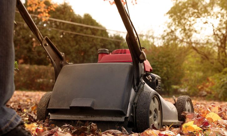 {Checklist: Do This Fall Yard Work Now and You Will Reap Benefits Next Spring}